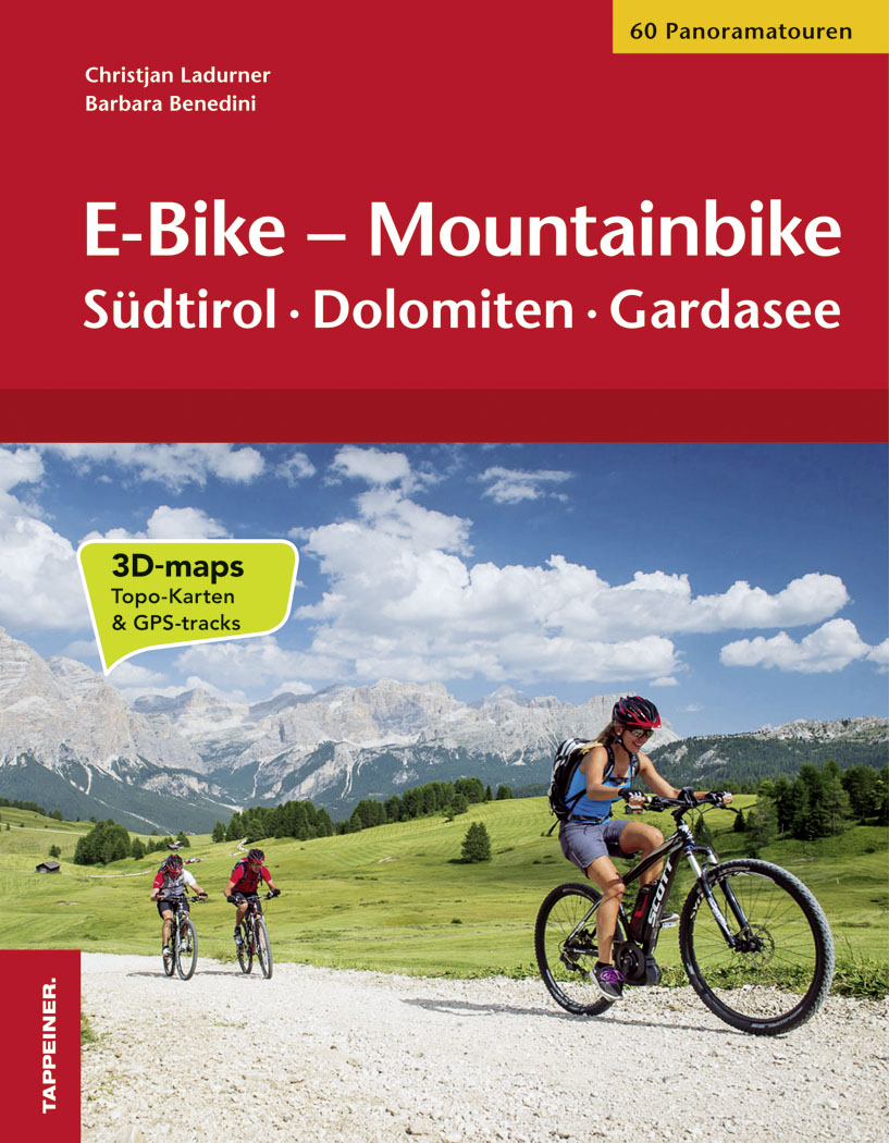 E-Bike - Mountainbike